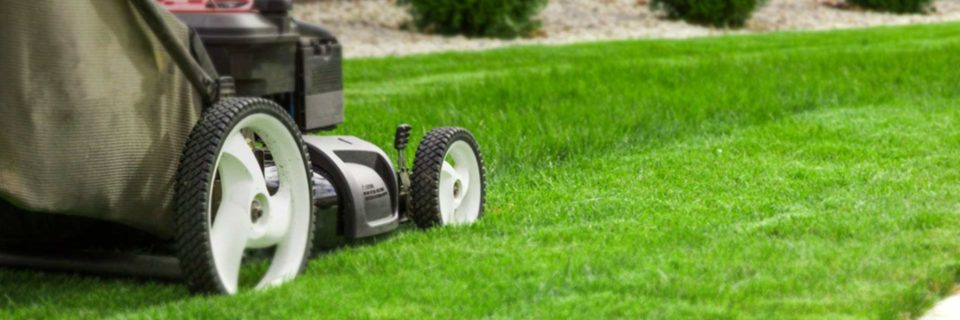 Image result for lawn service Arkansas